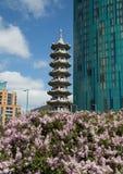 kinesisk pagoda Royaltyfri Bild