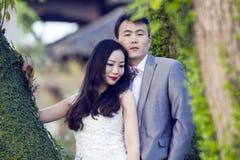 Kinesisk parbröllopportraint framme av gamla träd och gammal byggnad royaltyfria foton