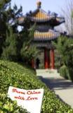 kinesisk paviljong Royaltyfri Foto