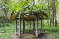 Kinesisk paviljong med Vegetationhatten royaltyfri fotografi
