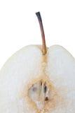 kinesisk pear arkivbild