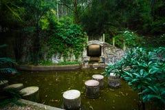 Kinesisk skola Royaltyfri Fotografi