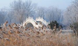 kinesisk sten för bro royaltyfri fotografi