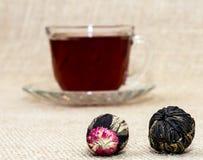 Exotisk tea amid kuper av tea Royaltyfri Foto