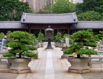 Kinesisk tempelpagod i Hong Kong Arkivbilder