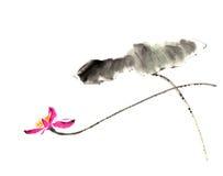 Kinesisk traditionell distingerad ursnygg dekorativ hand-målad färgpulver-vatten lilja Royaltyfria Bilder