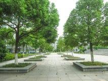 Kinesisk universitetsområde Arkivbild