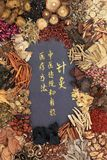 kinesisk växt- medicin Arkivfoto