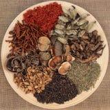 Kinesisk växt- medicin Arkivbild
