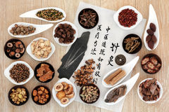 kinesisk växt- medicin royaltyfria foton