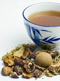 kinesisk växt- tea Royaltyfri Bild