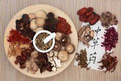 kinesiska örtar Royaltyfria Foton