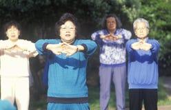 Kinesiska amerikaner som öva Tai Chi, den norr stranden, kan Francisco, CA Royaltyfria Bilder