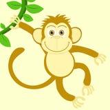 Kinesiska apor för nytt år Arkivfoto
