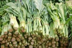 Kinesiska broccoligrönsaker Royaltyfri Bild