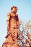 Kinesiska Buddha Royaltyfria Bilder