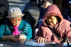 Kinesiska damer som spelar kort i Columbus Park, NYC Arkivfoton