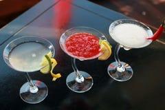 Kinesiska eller orientaliska drinkar Royaltyfri Foto