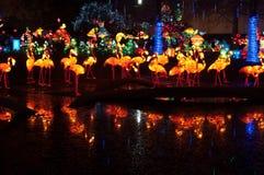 Kinesiska flamingolyktor reflekterade i ett damm Arkivbilder