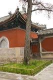 Kinesiska forntida byggnader och cypress Royaltyfria Bilder