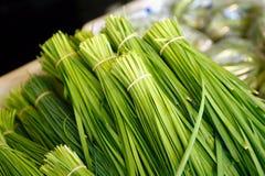 kinesiska gräslökar royaltyfri foto