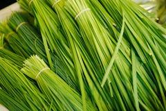 kinesiska gräslökar arkivbild