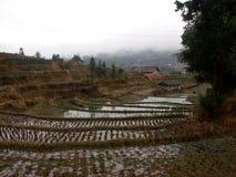 Kinesiska lantliga terrasser Fotografering för Bildbyråer