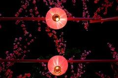 Kinesiska lyktor som hänger på en tråd royaltyfria foton
