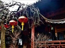 Kinesiska röda hängande lampor, träd och traditionella tak arkivbilder