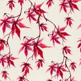 Kinesiska röda lönnlöv för höst seamless modell vattenfärg Arkivfoto