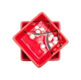 Kinesiska såsplattor Royaltyfri Bild