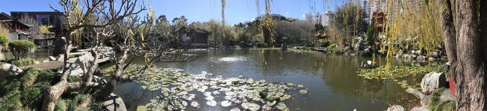 kinesiska trädgårdar Royaltyfri Fotografi