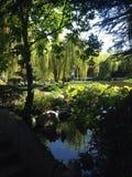 Kinesiska trädgårdar Sydney Arkivfoto