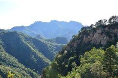 Kinesiskt berg med träd Royaltyfri Foto