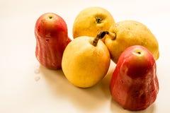 Kinesiskt doftande päron med thailändska Rose Apple Royaltyfri Bild