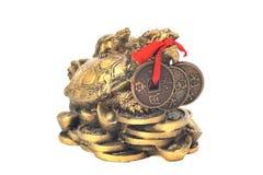 Kinesiskt drakesköldpaddasymbol av pengar på en vit bakgrund Arkivbild