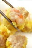 kinesiskt fördunkla maträttsumman royaltyfri fotografi