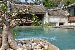Kinesiskt handels- hus för traditionell kines i Bangkok vatten för pölsimningparaplyer arkivfoto