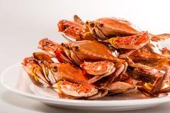 Kinesiskt kött - ångad krabba Arkivbild
