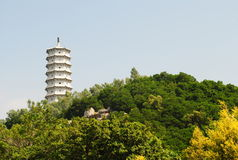 kinesiskt lyckligt torn Royaltyfria Foton