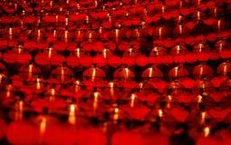 kinesiskt nytt år Royaltyfria Bilder