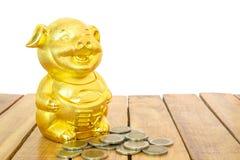 Kinesiskt nytt år, guld- svin eller Piggy guld- och guld- mynt på trätabellen År av jordsvinet royaltyfri bild