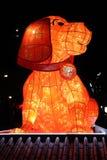 Kinesiskt nytt år - hunden royaltyfria bilder