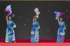 Kinesiskt nytt år 2019 arkivbild