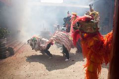 Kinesiskt nytt år lejondansen Royaltyfri Bild
