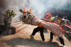 Kinesiskt nytt år lejondansen Royaltyfri Foto