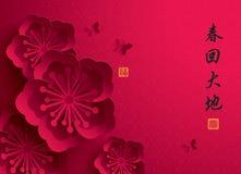 kinesiskt nytt år Pappers- diagram för vektor av Plum Blossom Arkivfoto