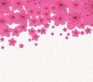 Kinesiskt nytt år - plommonblomningbakgrund royaltyfri illustrationer