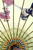 kinesiskt paraply Arkivbild