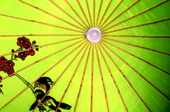 kinesiskt paraply Arkivbilder